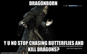 DRAGONBORN,Y U NO...?