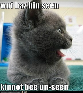 wut haz bin seen  kinnot bee un-seen