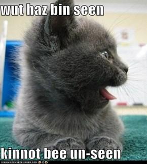 wut haz bin seen  kinnot bee un-seen
