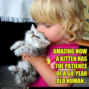 AMAZING HOW A KITTEN HAS THE PATIENCE OF A 60-YEAR OLD HUMAN...
