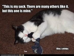 Also der R catnipz!