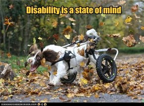 Disability is a state of mind