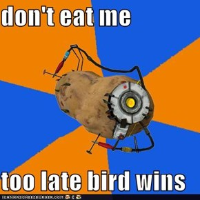 don't eat me  too late bird wins