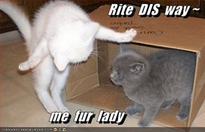 Rite  DIS  way ~                   me  fur  lady