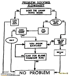 problem solving flowsheet WIN