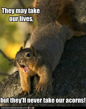 Squirrelheart