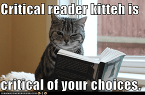 Critical reader kitteh is  critical of your choices.