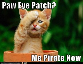 Paw Eye Patch?                     Me Pirate Now