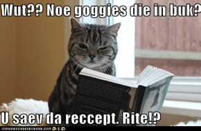 Wut?? Noe goggies die in buk?  U saev da reccept. Rite!?