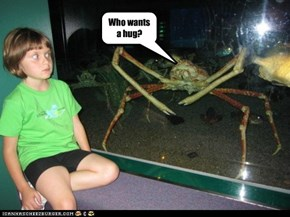 No kids like grabby crabs