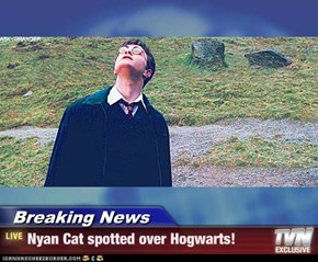 Breaking News - Nyan Cat spotted over Hogwarts!