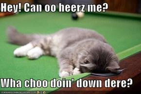 Hey! Can oo heerz me?  Wha choo doin' down dere?