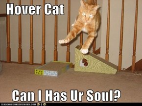 Hover Cat      Can I Has Ur Soul?