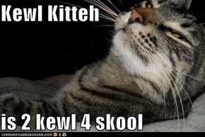Kewl Kitteh  is 2 kewl 4 skool