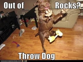 Out of                   Rocks?             Throw Dog