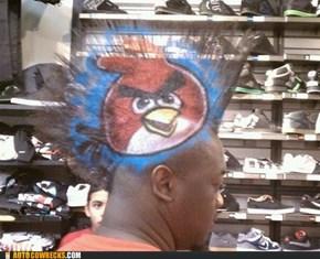 Angry 'Hawk