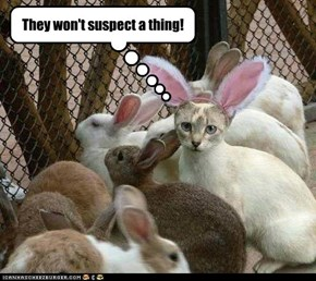 They won't suspect a thing!