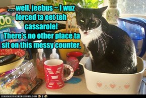. . . well, jeebus ~ I wuz forced ta eet teh cassarole! There's no other place ta sit on this messy counter,