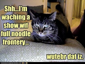 Shh...I'm waching a show wif full noodle frontery...