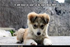 Heed  Me!