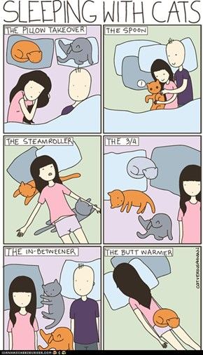 Kitteh Komic ob teh Day: Sleeping With Cats