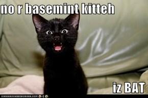 no r basemint kitteh