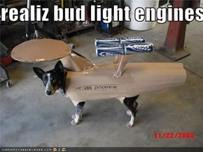 realiz bud light engines