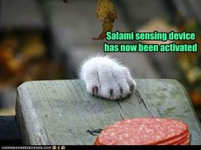 Salami sensing device