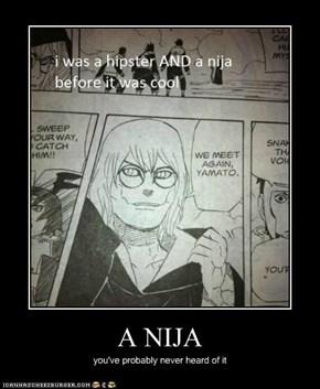 A NIJA