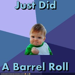 Just Did  A Barrel Roll