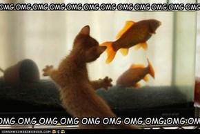 FISIES!!!!!!!!!!!!!!!!!!!!!!!!!!!