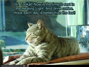 Hi, Tookat! Now is the time to rest in the Healing Light. And drink coffee. Hope each day is better than the last!