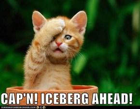 CAP'N! ICEBERG AHEAD!