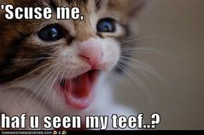 'Scuse me,  haf u seen my teef..?