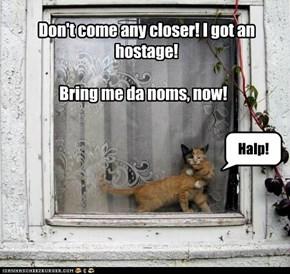 Save the kitteh, bring da noms!