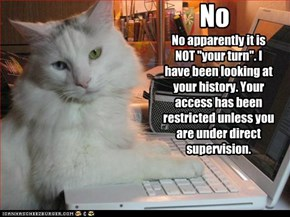 Cuaght looking at kitties online...