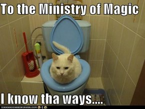 To the Ministry of Magic  I know tha ways....