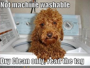 Not machine washable