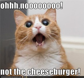 ohhh,noooooooo!  not the cheeseburger!