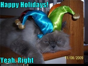 Happy Holidays!  Yeah, Right