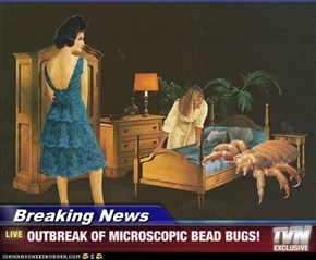 Breaking News - OUTBREAK OF MICROSCOPIC BEAD BUGS!