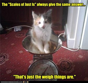 "The ""Scales of Just Is"""