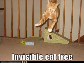 Invisible cat tree