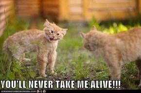 YOU'LL NEVER TAKE ME ALIVE!!!