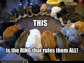 Sorry Tolkien!