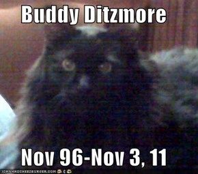 Buddy Ditzmore  Nov 96-Nov 3, 11