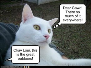 Okay Loui, this is the great outdoors!