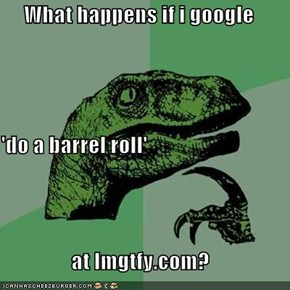What happens if i google  'do a barrel roll' at lmgtfy.com?
