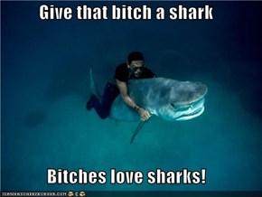 Give that bitch a shark  Bitches love sharks!