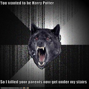 You wanted to be Harry Potter  So I killed your parents now get under my stairs
